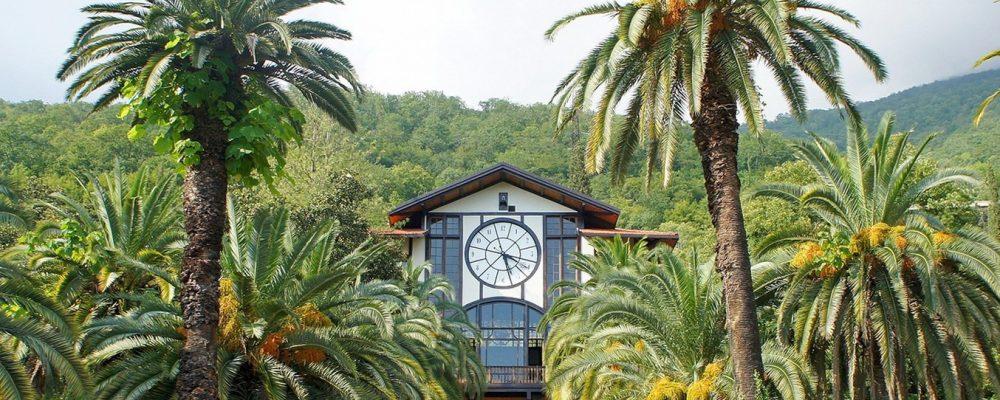 Абхазия стала самой популярной страной у российских туристов