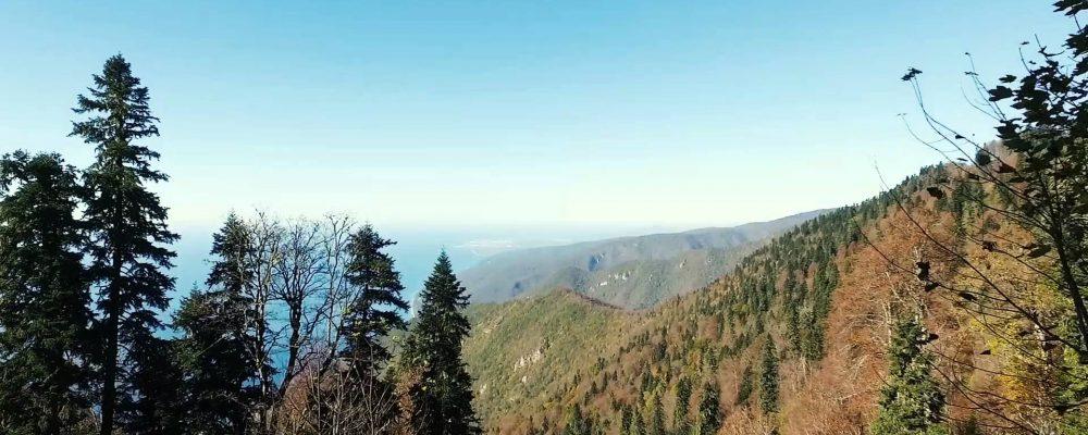 Гора Мамзышха. Гагра. Видео