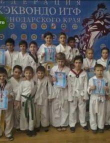 16 декабря в Сочи проходил предновогодний Международный открытый детский турнир по таэквандо ИТФ
